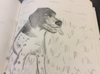 Fripouille chien fidèle ❤️