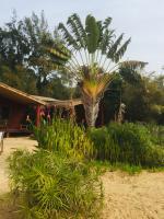 Jardin de notre eco lodge