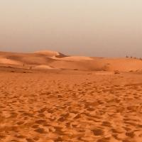Bisous du désert de lompoule