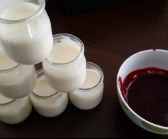 PANNA COTTA - COULIS DE FRUITS ROUGES