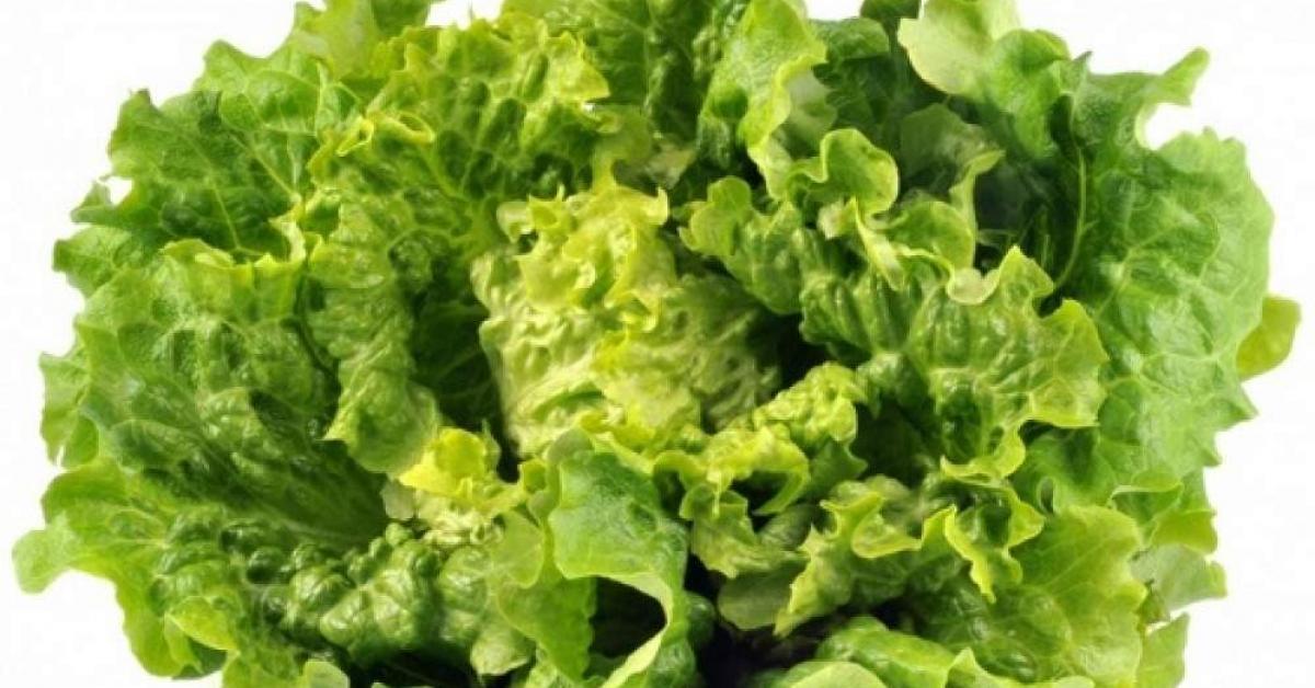8 aliments viter de consommer le soir le blog de sejusa - Salade verte calorie ...