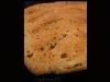 Fougasse Roquefort subtil, lardons roussis et éclats de noix