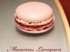 Macarons « Larognon » (myrtilles-citron)