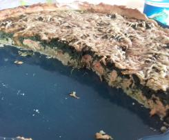 Variante tarte épinard saumon gruyere
