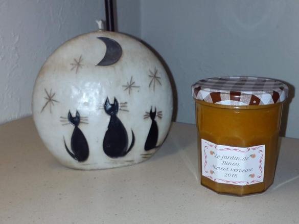 confiture abricot verveine thermomix