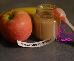 Compote Pommes/Bananes