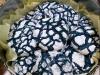 Los cocodrilos (crinkles blue lagoon: white chocolate & coconut)