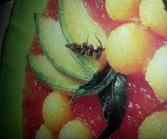 Nage de pastèque et de melon
