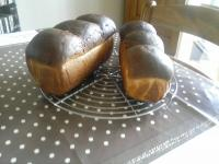 brioche thermomix