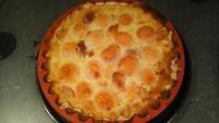 Tarte abricots nectarines