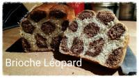 Brioche Leopard